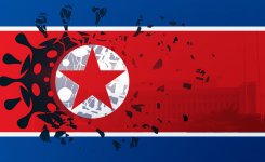 The Coronavirus and its Likely Impact on North Korea
